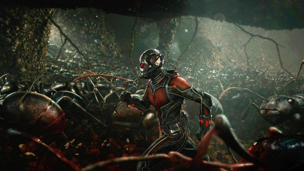 antman-ants-Featured.jpg